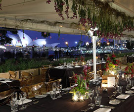 Alfresco Weddings on The Harbour from $100pp